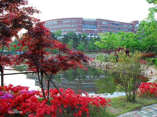 河北外国语学院日,韩专业学生免费出国留学不再是梦